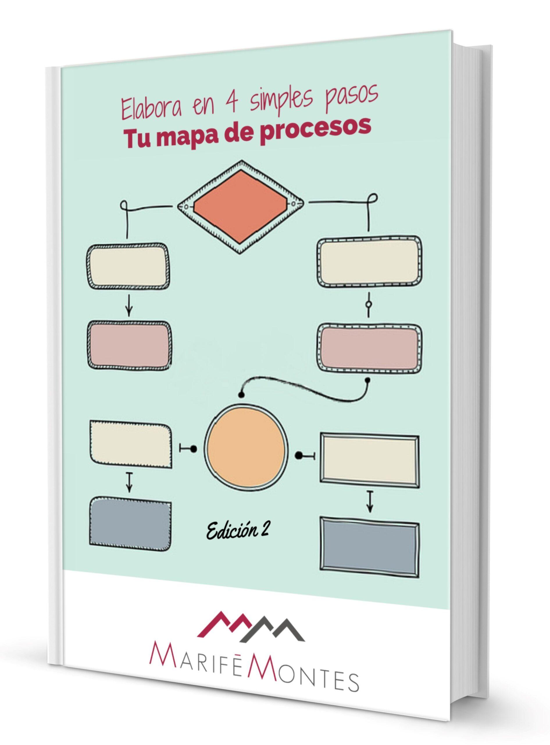 ebook Mapa de procesos