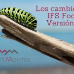 IFS food versión 7