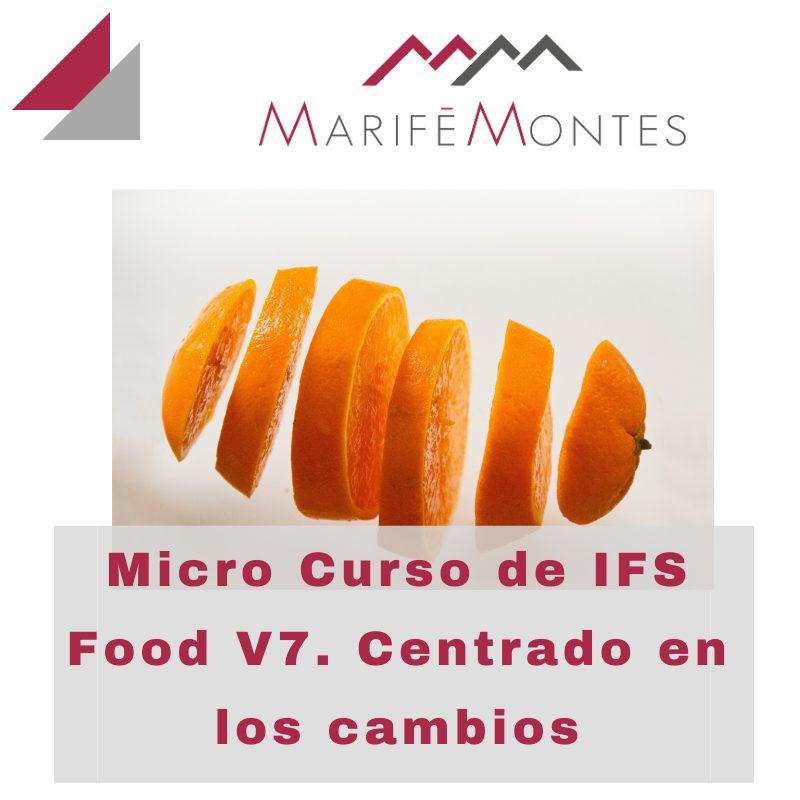 MICROCURSO IFS V7